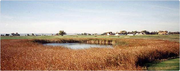 Bluffs Golf Course